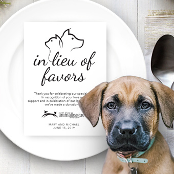 In  lieu of favors contribution card alongside a photo of a dog.